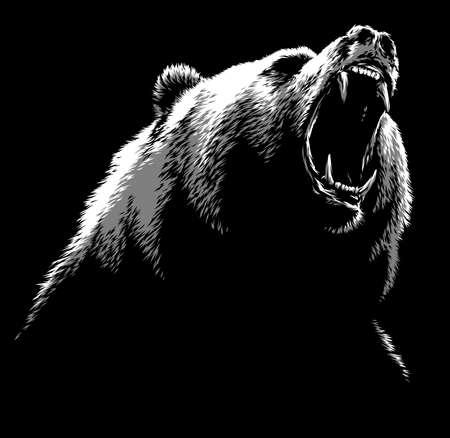 black and white linear draw bear illustration Standard-Bild - 156392222