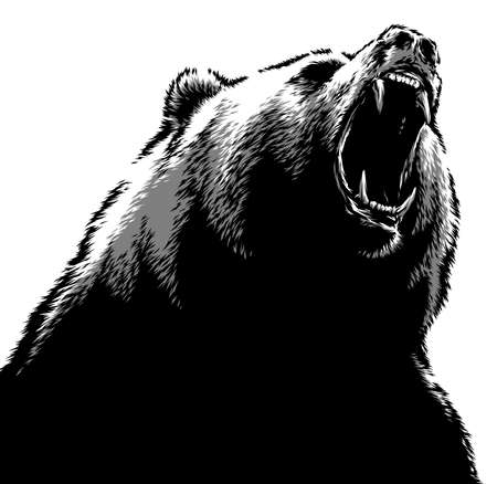 black and white linear draw bear illustration Standard-Bild - 156392229