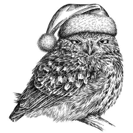 black and white engrave isolated owl illustration Imagens - 157732298