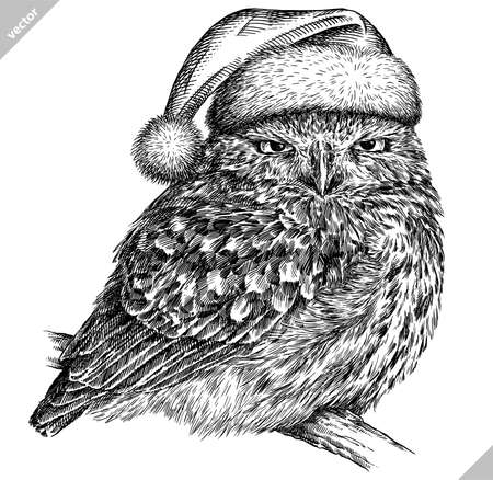 black and white engrave isolated owl illustration