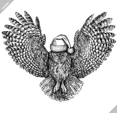 black and white engrave isolated owl illustration Ilustración de vector