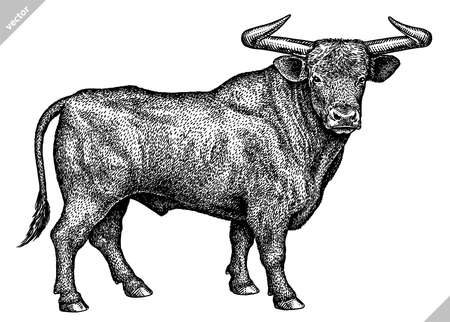 black and white engrave isolated bull vector illustration Imagens - 159252894