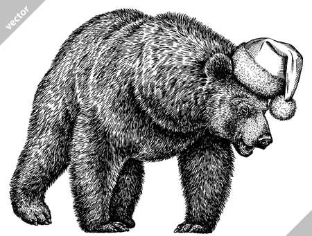 black and white linear paint draw bear vector illustration Illustration