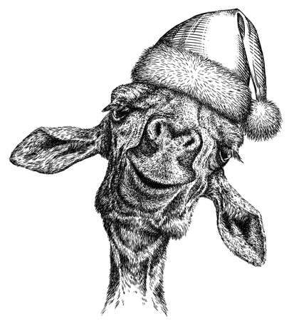 black and white engrave isolated giraffe illustration