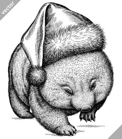 black and white engrave isolated wombat vector illustration