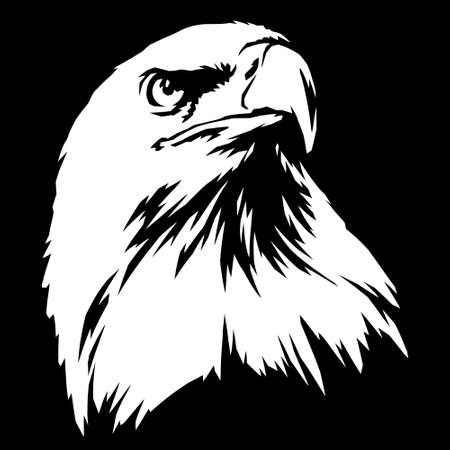 black and white linear paint draw eagle illustration art