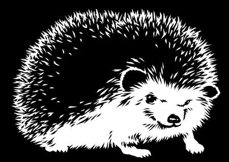 black and white linear paint draw hedgehog illustration art
