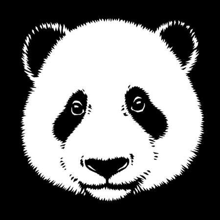 black and white linear paint draw panda illustration art