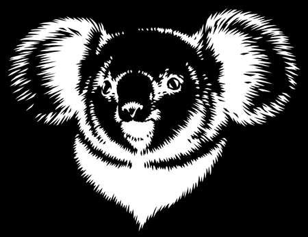 black and white linear paint draw koala illustration art Standard-Bild