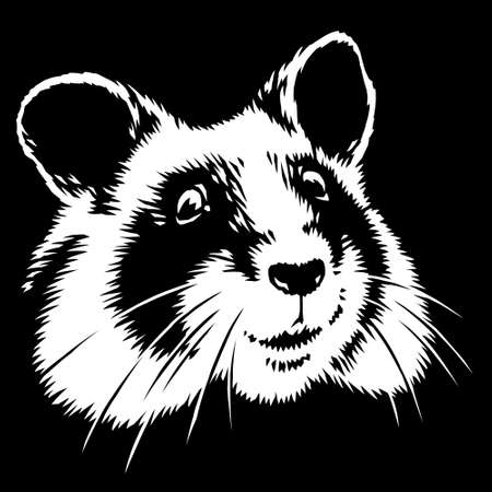 black and white linear paint draw hamster illustration art