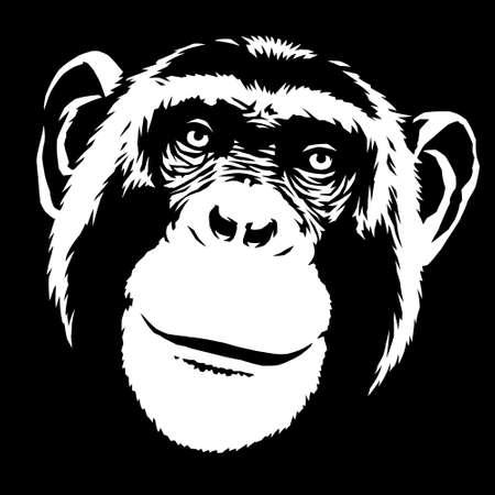 black and white linear paint draw monkey illustration art