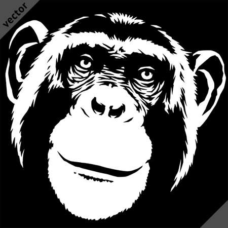 black and white linear paint draw monkey vector illustration art
