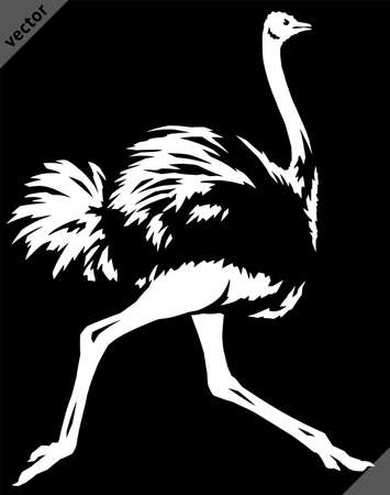 black and white linear paint draw ostrich vector illustration art Ilustracja