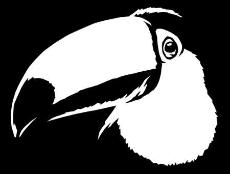 black and white linear paint draw Toucan illustration art 写真素材