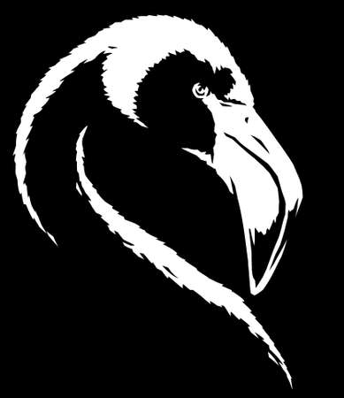 black and white linear paint draw flamingo illustration art