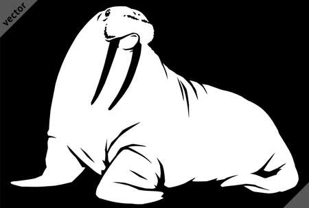 black and white linear paint draw walrus illustration art 向量圖像