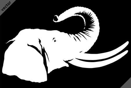 black and white linear paint draw elephant illustration art
