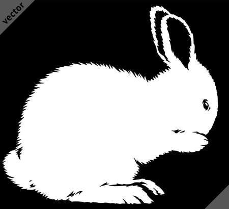 black and white linear paint draw rabbit illustration art