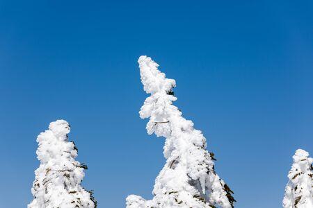 Moriyoshi Ani Ski Resort
