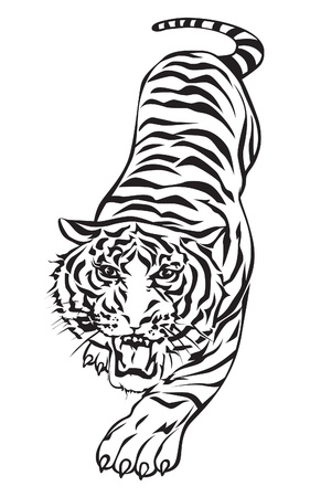 fear illustration: Tiger walking design.
