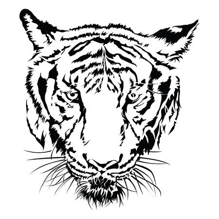 Tiger head silhouette, illustration vector design.