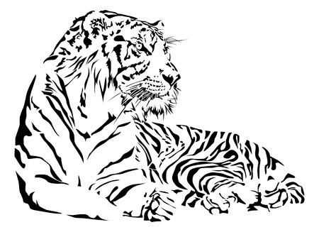 Tigre preto e branco, ilustração do vetor.