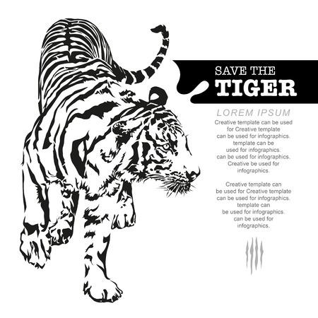 Tiger walking, black and white color, illustration design.