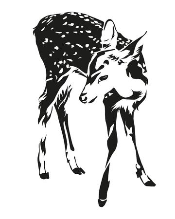 Spotted deer black and white color, illustration design. Illustration