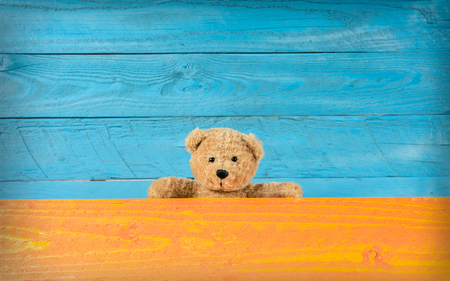 Cute teddy bear with background full colors, template for design.