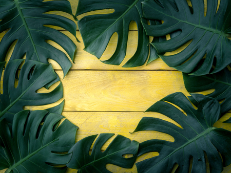 Green tropical leaves on yellow wood background, template for design work.
