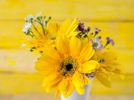 Coloridas flores con fondos de colores, así, el concepto de amor, plantillas para el diseño.