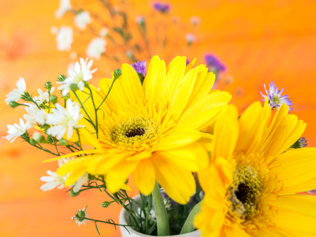 Colorful flowers with colorful backgrounds as well, Love concept, Templates for design.