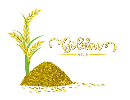 Golden rice on white background, Vector illustration and design. Illustration