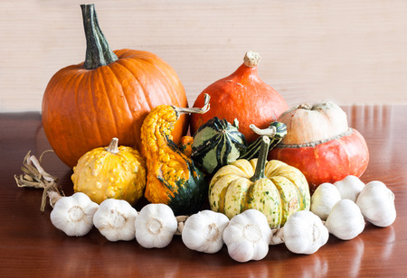 Composition of colorful pumpkins, garlic and squashes in a kitchen on a wooden table