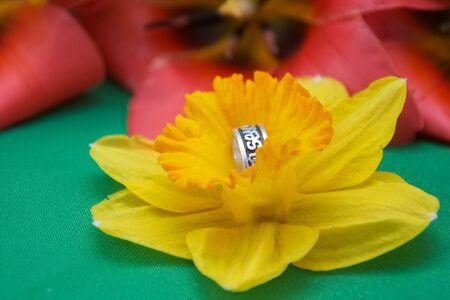 daffodil and wedding ring Banco de Imagens