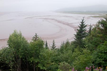 provincial: Mud flats at Hopewell Provincial Park, New Brunswick, Canada Stock Photo