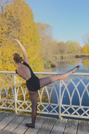 ballet on a bridge Stock fotó - 16653465