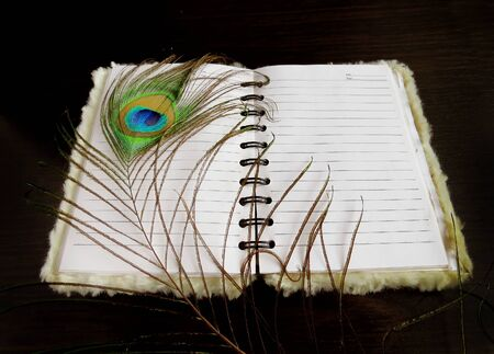 gold record: Notepad with a peacock feather on dark background