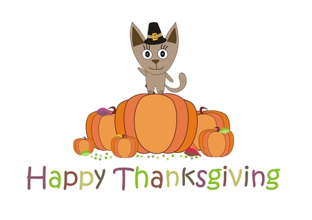 happy thanksgiving: Happy Thanksgiving, the cat in the hat on the pumpkin - vector Illustration
