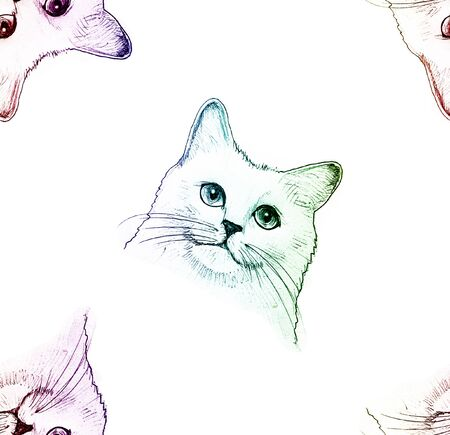 Seamless pattern with hand-drawn Cat