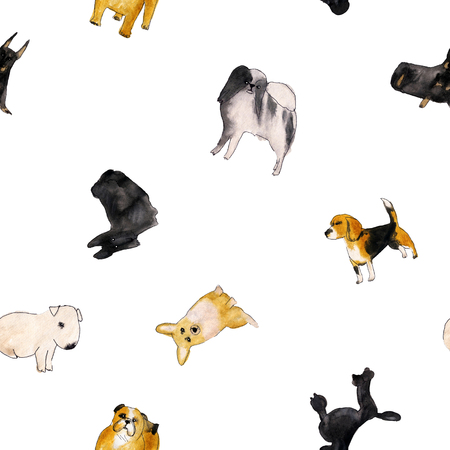 Watercolor illustration set of dogs, seamless pattern isolated on white background Фото со стока