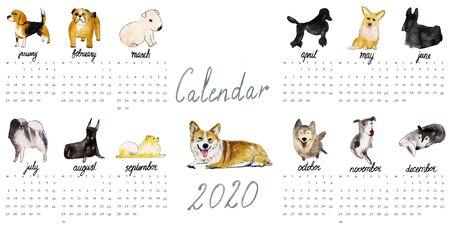 Dogs Calendar 2020. Watercolor illustration