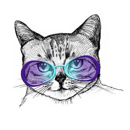 Cat in glasses portrait. Hand drawn illustration