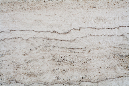 coquina: White coquina wall. Background, texture.