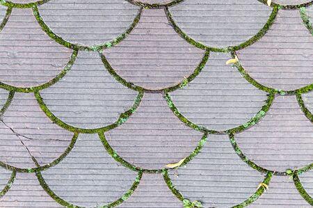 decorative paving tile on the sidewalk. background, texture, pattern.
