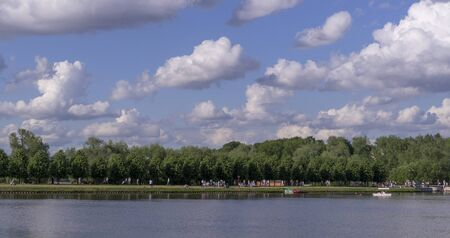 pure lake in the park at sunny summer day. nature, seasons.
