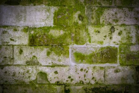 old stone brick wall with green mold and moss texture with vignette. background, architecture. Reklamní fotografie