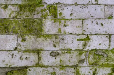 old stone brick wall with green mold and moss texture. background, architecture.