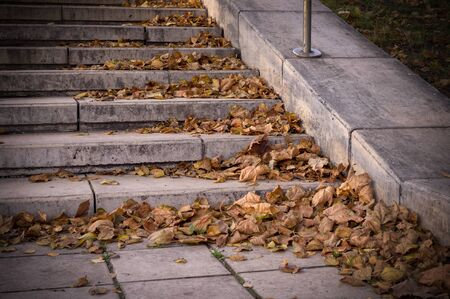 yellow autumn leaves on stone stairs of city park. vignette, background, seasonal.