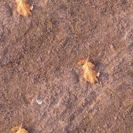 seamless sand path with yellow autumn leaf texture, seasonal